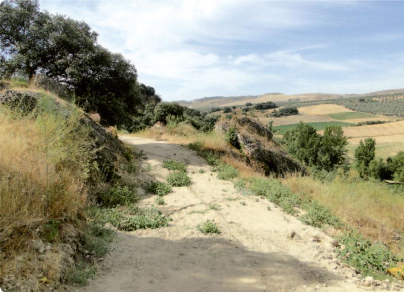 Ruta de los Bandoleros de Setenil